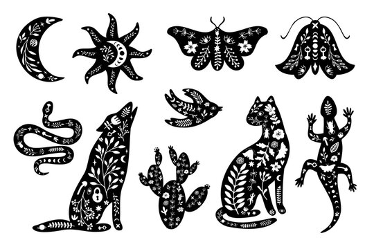 Set of black silhouettes with white floral elements. Moon, sun, animals, wolf, cat, lizard, cactus, moth, bird, snake.