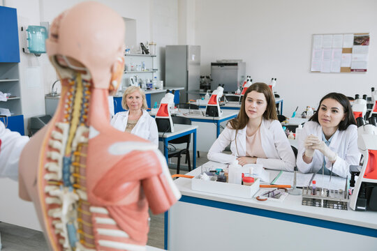 View of students analyzing anatomy model in science class