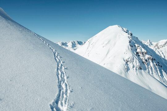 Chamois tracks on snow capped mountains against sky, Lechtal Alps, Tyrol, Austria