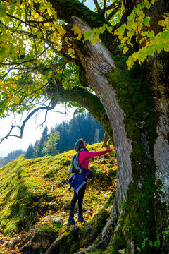 Female hiker touching linden tree while standing on mountain