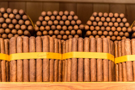 A detail shot of cigars in a humidor in Granada, Nicaragua.