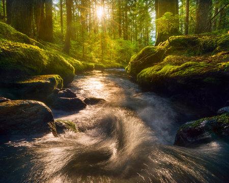 The setting sun illuminates a small cascade in the Mt. Hood wilderness, Oregon.