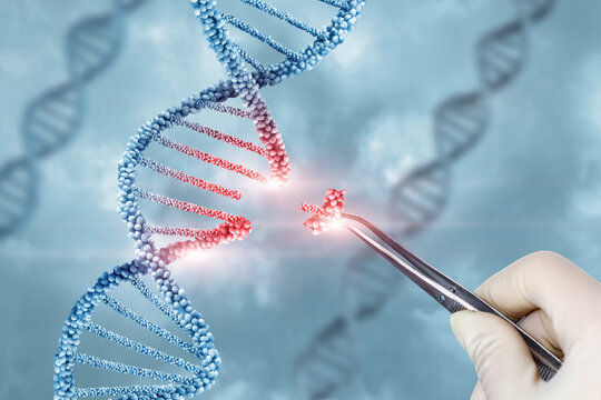 Concept of treatment and adjustment of DNA .