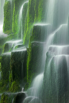 Oregon's Proxy Falls flowing over a staircase of mossy volcanic rock.