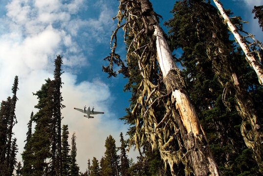 Lead plane sets a drop line for the following retardant tanker while the firefighters fight the Crofton Fire at Mt. Adams, Washington, USA.