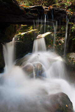 Smoky Mountain National Park: Water flows down the rocks and pours through the center of a fallen and rotten tree trunk just below Grotto falls