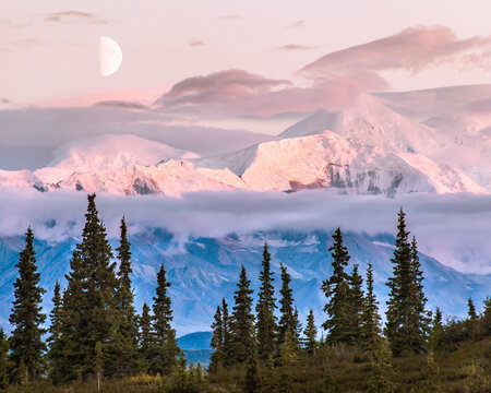 Half moon at sunset over Mt. Crosson and Kahiltna Dome, National Park, Alaska.