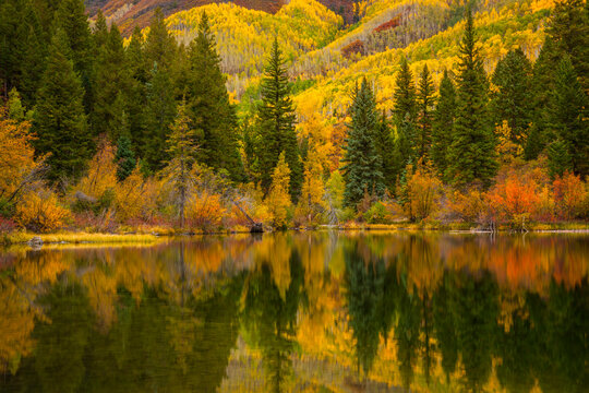 Lizard Lake is a bottomless lake outside of Marble, Colorado on the way to Crystal Mill.