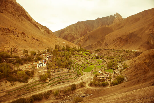 Terraced farmland and houses in the valley of Mangue in Ladakh, India