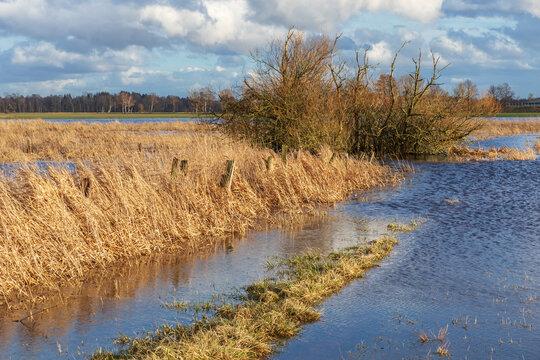 Frühjahrshochwasser in der Oberalsterniederung mit überfluteten Wiesen Mitte März in Schleswig-Holstein, Deutschland.