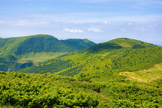 mountain landscape in summer. beautiful scenery on a sunny day. view in to the distant ridge under the blue sky with dynamic cloud formation