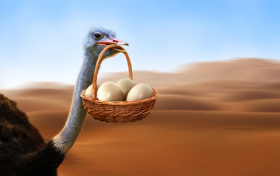 Ostrich running in a savanna desert carrying a basket with eggs. Funny work or business concept.