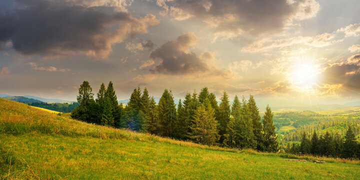 forest on the grassy meadow in mountains at sunset. beautiful countryside landscape in evening light. fluffy clouds on the blue sky above the distant borzhava ridge. summer adventures in carpathians