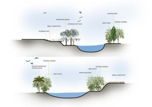 Landscape Section