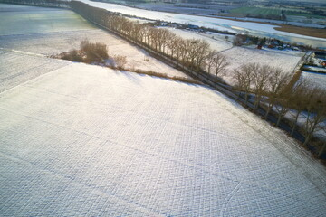 Drone winter snowy landscape with trees and road.  - fototapety na wymiar