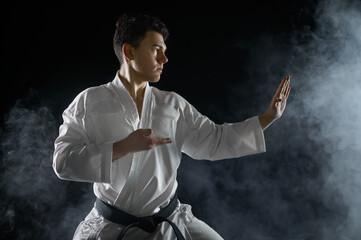 Male karate fighter in white kimono, combat stance
