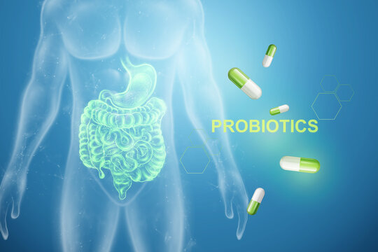 Image of intestines and pills, inscription probiotics. The concept of diet, intestinal microflora, microorganisms, healthy digestion. 3D render, 3D illustration.