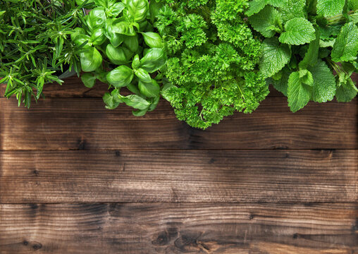 Fresh herbs rustic wooden background. Basil rosemary parsley mint