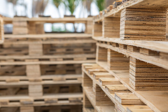 Selective focus of Pattern old wood pallet pile  texture background