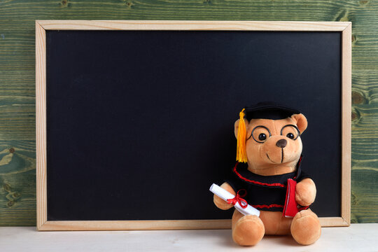 Cute teddy bear with nice graduation clothes and diploma in front of black chalkboard. School concept