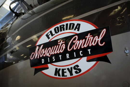 GMO mosquitos released in Florida Keys