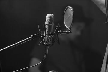 Fototapeta Professional microphone in the recording studio. obraz
