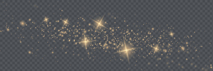 Fototapeta The dust sparks and golden stars shine with special light. Vector sparkles on a transparent background. obraz