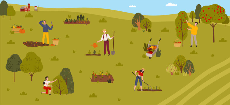 Green Country Field with Farmers Growing Crops, Harvesting and Cultivating Soil Vector Illustration