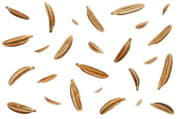 Fototapeta Falling caraway seeds isolated on a white background, top view. Cumin seeds in the air on a white background. Set of cumin seeds in the air. Caraway grains isolated on white background. obraz