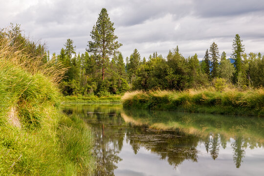 slow peaceful river scene on a pleasant afternoon, Whitefish River, Montana