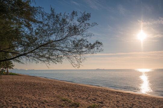 Sunrise on tropical sea and tree on the beach