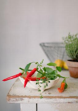 Chili, Perperoni oder Peperoncini selbst geerntet in einer Keramikschale zur Essenszubereitung