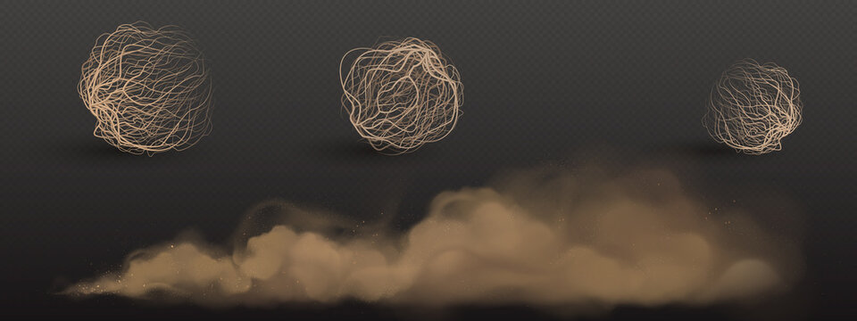 Brown dust clouds and tumbleweed, dry weed balls isolated on transparent background. Vector realistic set of flow desert sand and rolling dry bushes, dead plants, old tumble grass in prairie