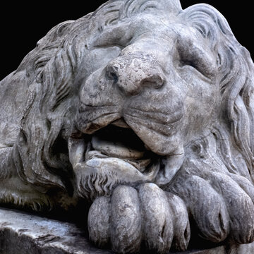 Ancient stone statue of lion. Close up.