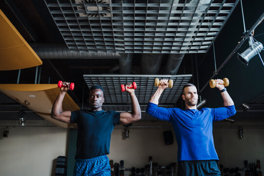 Muscular male athletes exercising together with dumbbells in gym