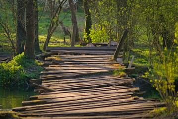 Stary, drewniany, zniszczony most w lesie. - fototapety na wymiar