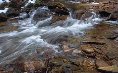 Fototapeta Początek rzeki Wisła obraz