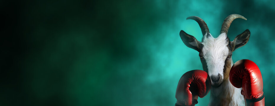 Goat with boxing gloves in a dramatic smoke background with copy space. Greatest boxer conceptual theme.