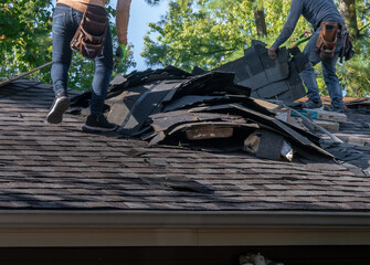 Fototapeta Roofers removing old material from a house in preparation for storm damage repair. obraz
