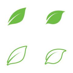 Fototapeta Logos of green Tree leaf ecology obraz
