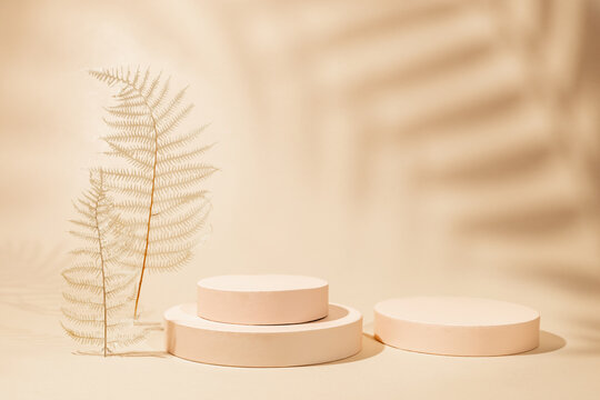 Abstract background with geometric podiums or pedestals for products presentation or exhibitions. Empty cylinder podiums on pastel backdrop. Shadows of palm leaves on wall