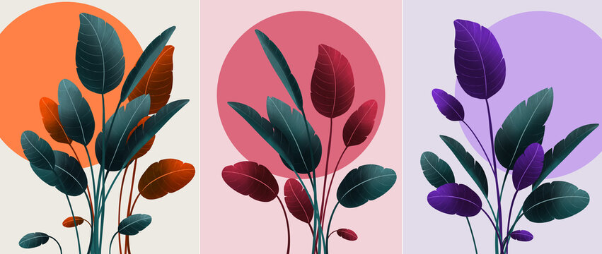 Tropical abstract forest, decorative beautiful garden. Vector illustration set