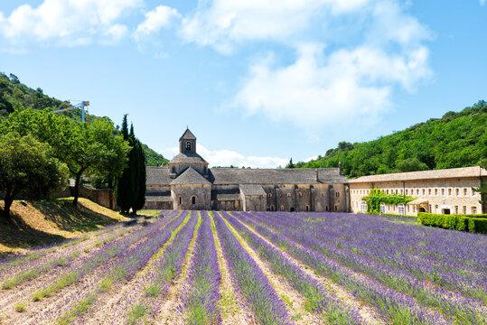 Notre Dame De Sénanque abbey in Provence, France