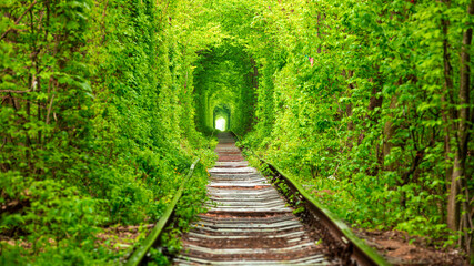 Fototapeta a railway in the spring forest tunnel of love obraz