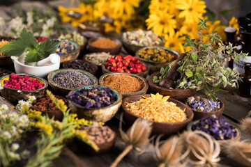 Fototapeta Natural remedy, healing herbs background obraz