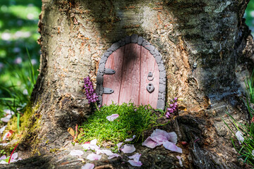 Little fairy tale door made from clay in a tree trunk with pink petals