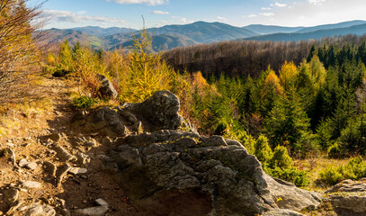 Panorama from the top of Dwernik Kamień on the high Bieszczady Mountains, Bieszczady Mountains
