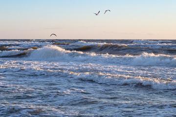 Polskie morze - Bałtyk