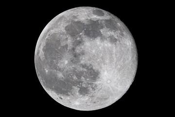 Obraz Full moon - fototapety do salonu