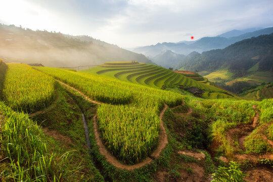 Green Terraced Rice Fields In Rainny Season At Mu Cang Chai, Vietnam